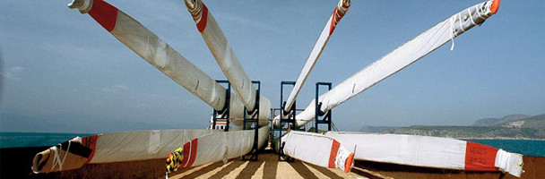 New turbines should support Vestas growth