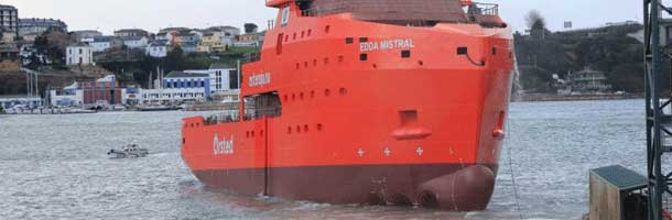 Edda Mistral jumps the gun on Hornsea